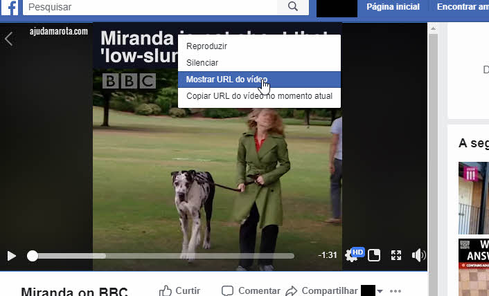 Mostrar URL do vídeo no Facebook PC