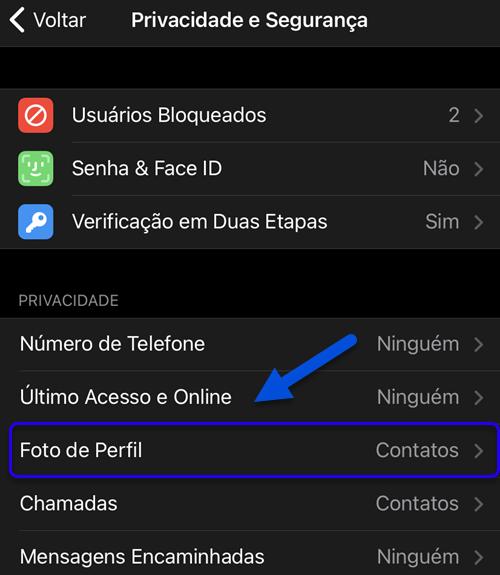 Foto de perfil Telegram iPhone Android